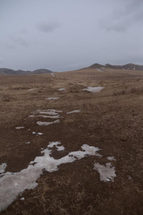 Balade avec la chienne Barkal avant la neige.