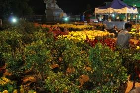 Têt ! Nouvel an chinois, des fleurs partout !!